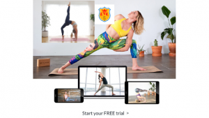 online yoga teacher training certificate