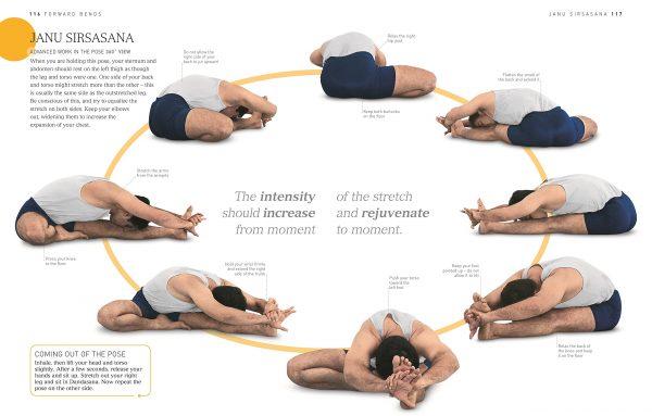 b k s iyengar yoga book online