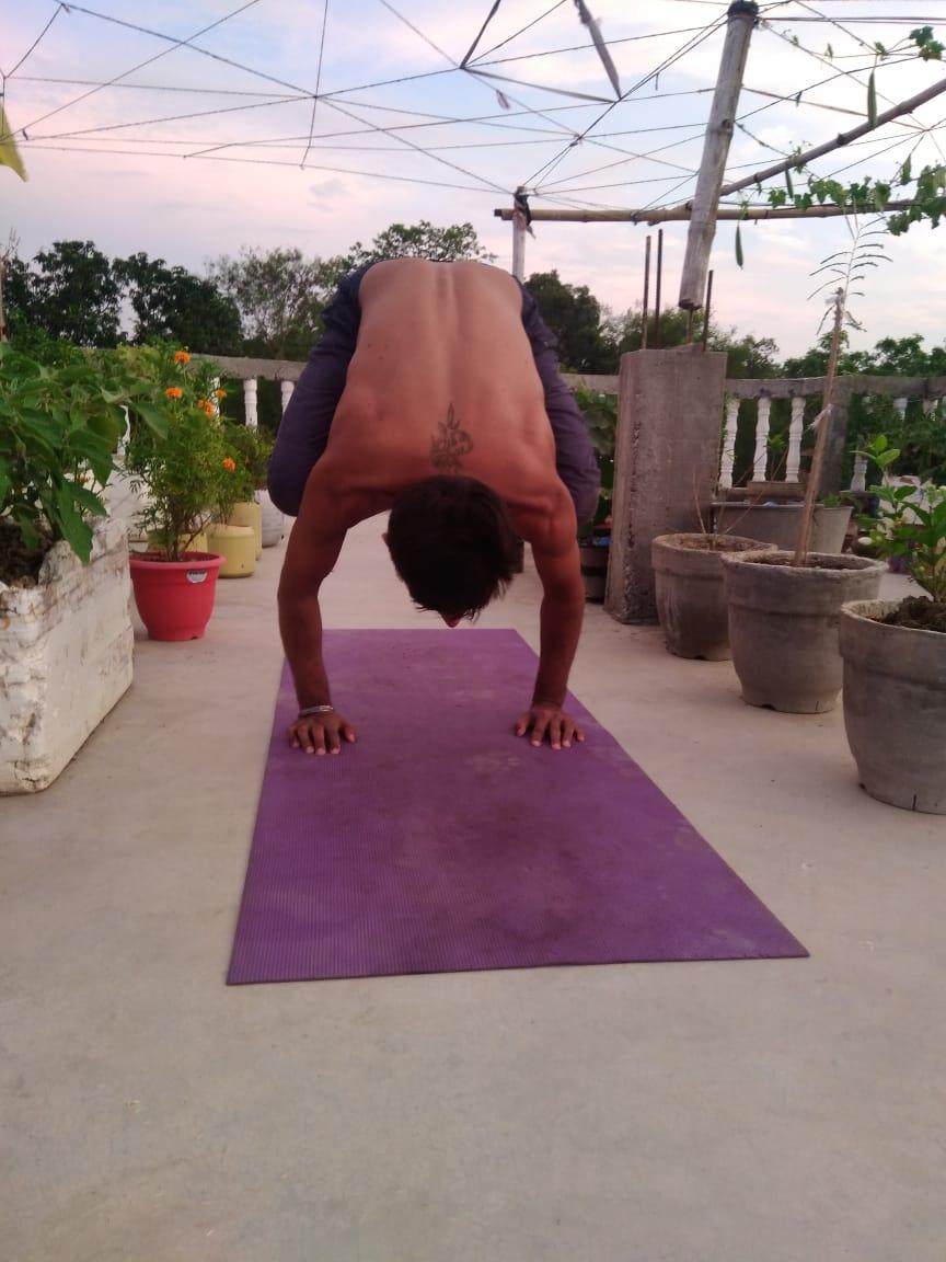 certified online yoga teacher