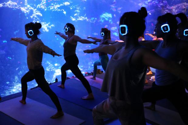 online yoga classes in san francisco