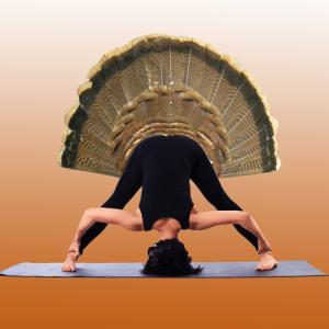 Online Yoga Classes In Turkey